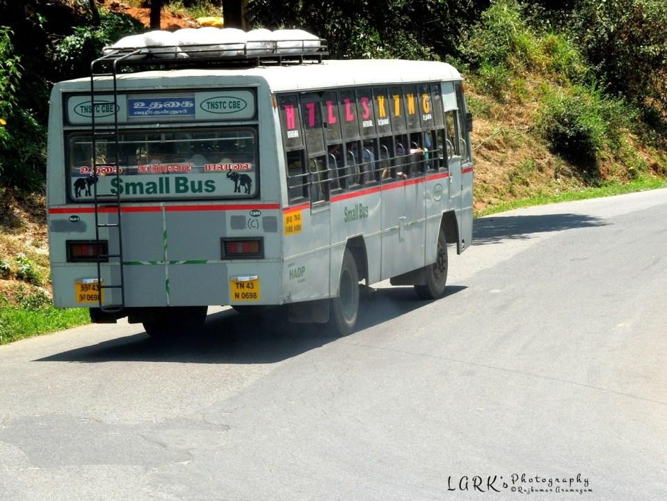 TNSTC TN 43 N 0698 Palamalai - Ooty
