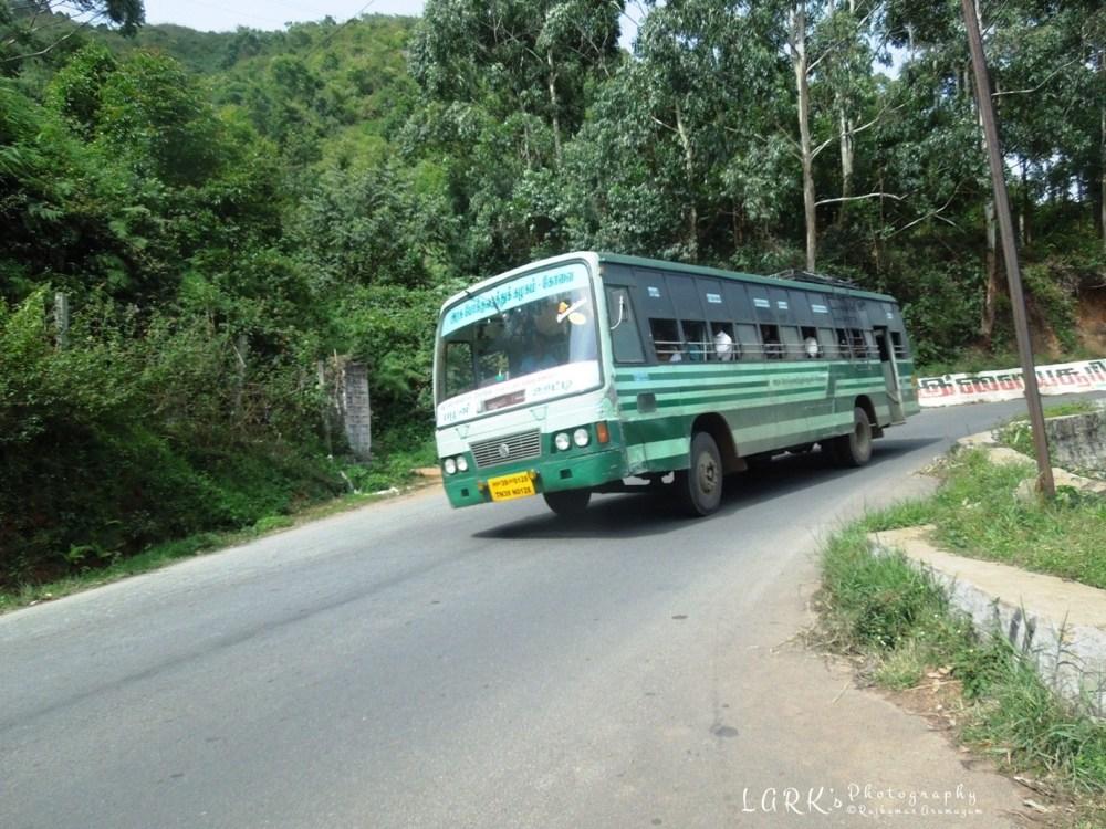 TNSTC TN 39 N 0128 Palani - Ooty