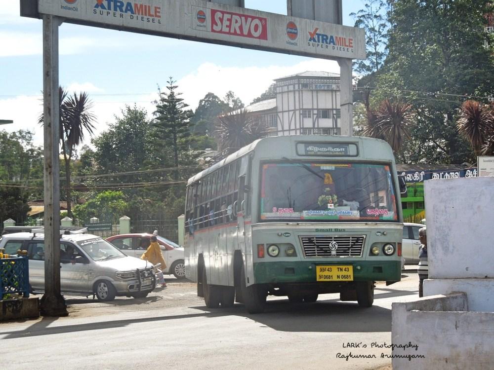 TNSTC TN 43 N 0681 Ooty - Geddai