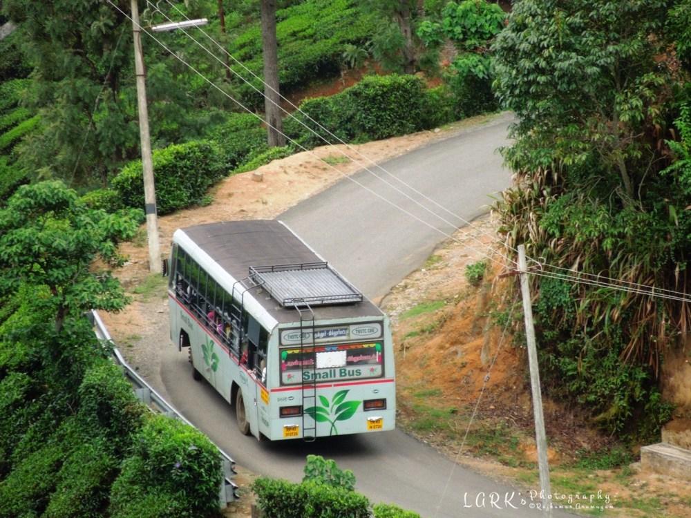 TNSTC TN 43 N 0720 Coonoor - Pillurmattam