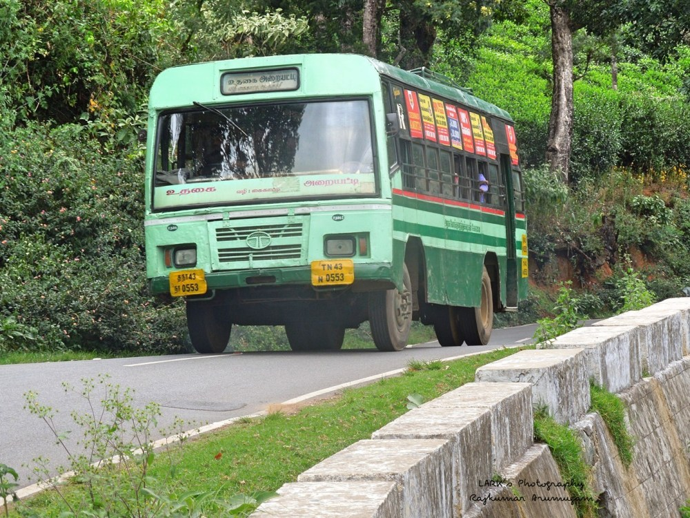 TNSTC TN 43 N 0553 Ooty - Araihatty