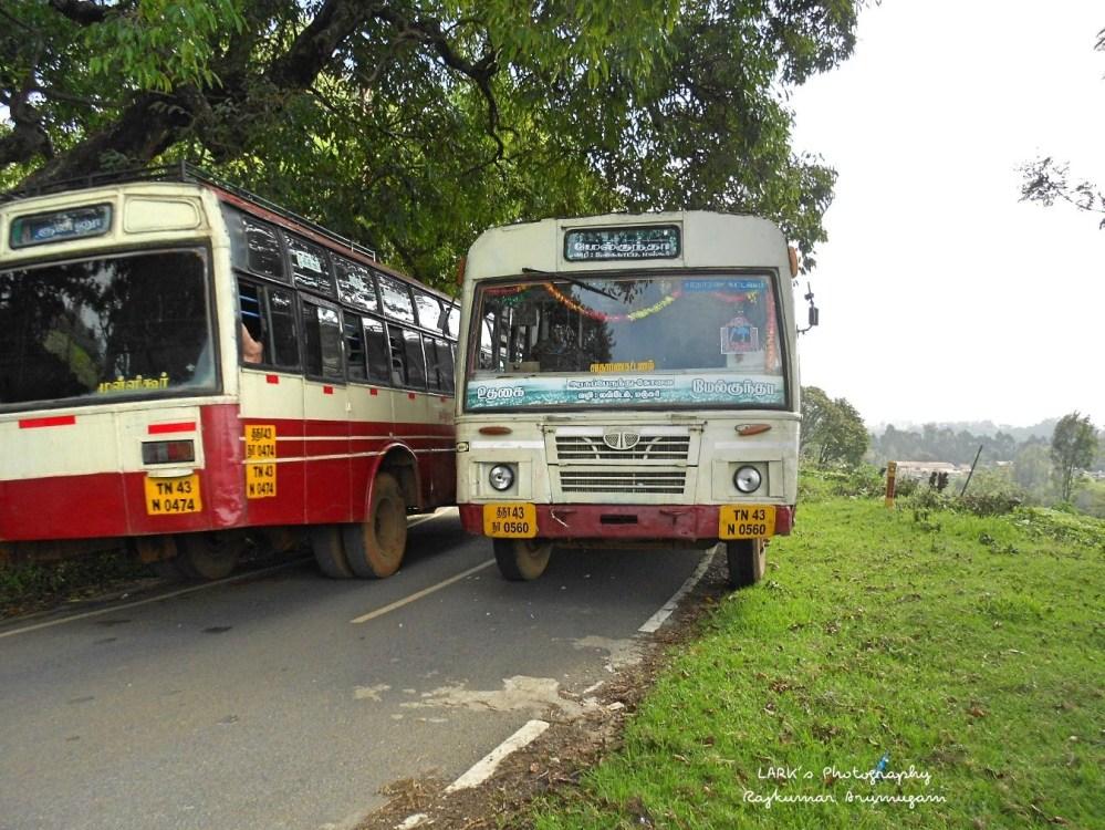 TNSTC TN 43 N 0560 Ooty - Melkundah