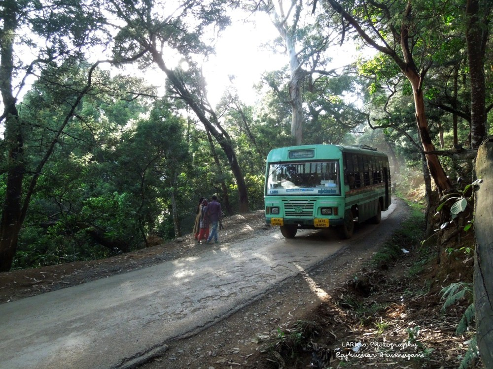 TNSTC TN 43 N 0562 Ooty - Manjakombai