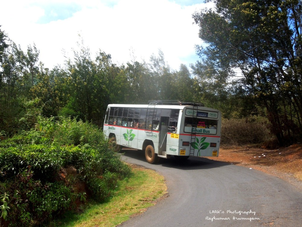 TNSTC TN 43 N 0686 Mettupalayam - Kappachi