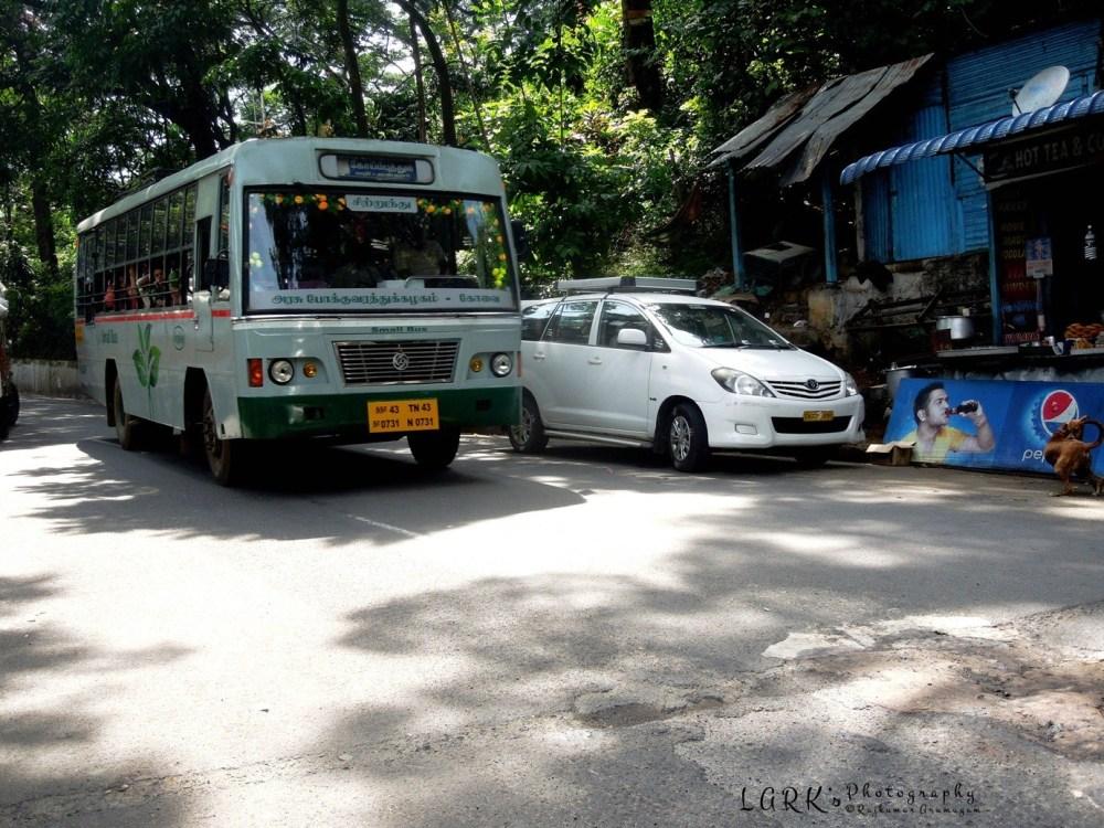 TNSTC TN 43 N 0731 Coimbatore - Mulligur