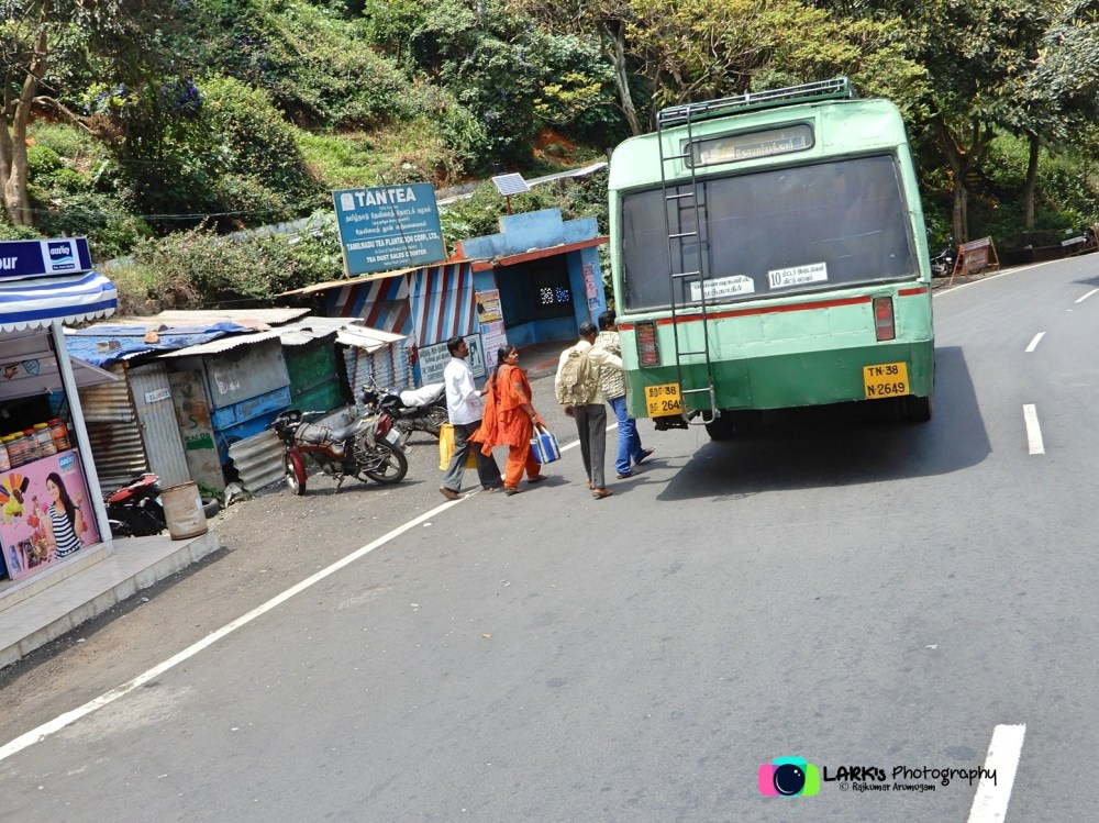 TNSTC TN 38 N 2649 Ooty - Coimbatore