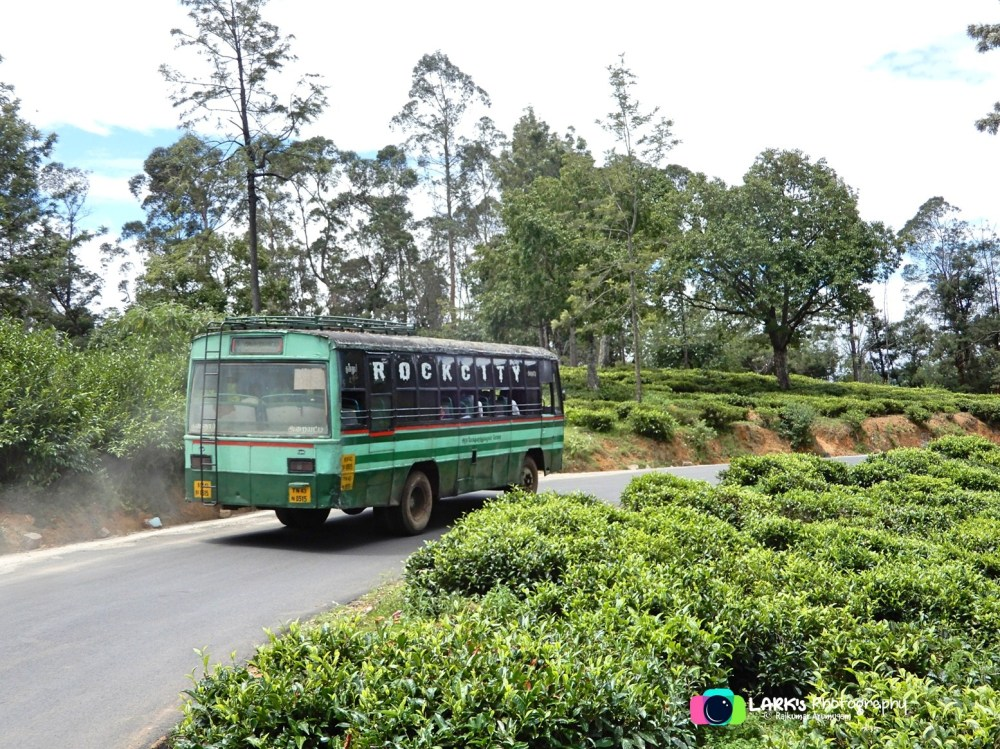 TNSTC TN 43 N 0515 Coonoor - Araihatty - at Harukuchi - June'17