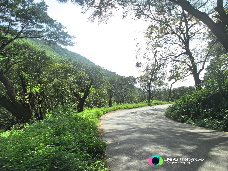 Mannarkkad – Mukkali Road